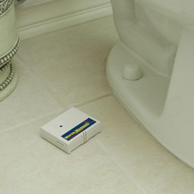 Don't have a water leak alarm? Get one!