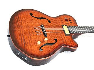 Godin Jazz Guitars 2013